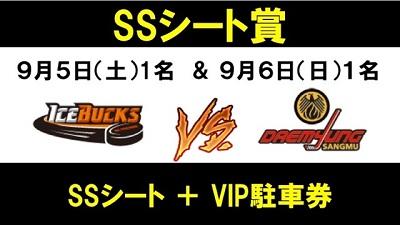 9_3 SSシート賞 (2)HP